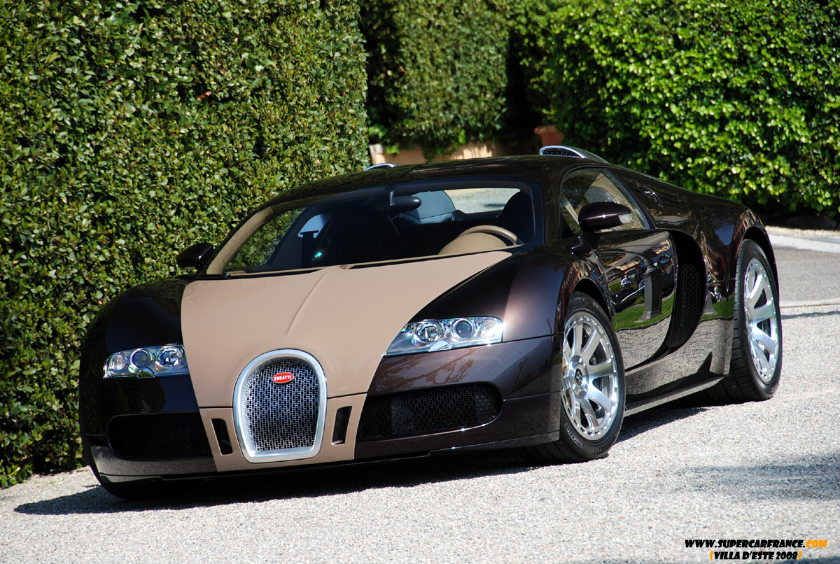 bugatti veyron by hermes bugatti hermes love mauvert bugatti veyron fbg par hermes for sale uk. Black Bedroom Furniture Sets. Home Design Ideas